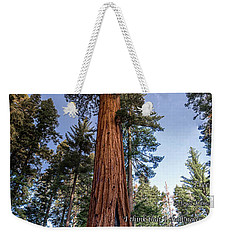 A Poem Lovely As A Tree.   Weekender Tote Bag by Phil Abrams