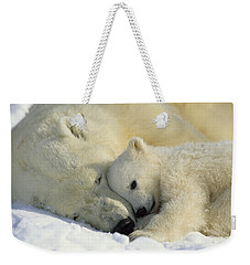 A Polar Bear And Her Cub Napping Weekender Tote Bag