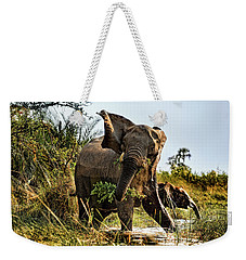 A Protective Mama Elephant With Calf  Weekender Tote Bag