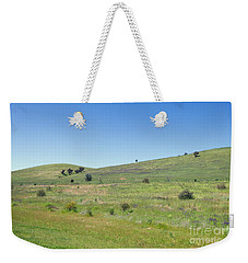 Weekender Tote Bag featuring the photograph A Quiet Interlude by Linda Lees