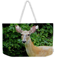 A Serious Deer Weekender Tote Bag