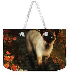 A Siamese Cat Is Looking  Weekender Tote Bag