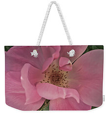 Weekender Tote Bag featuring the photograph A Single Pink Rose by Joann Copeland-Paul