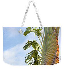 Weekender Tote Bag featuring the photograph A Slice Of Nature by Ana Mireles