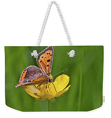 A Small Copper Butterfly (lycaena Weekender Tote Bag by John Edwards
