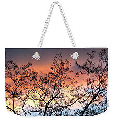 Weekender Tote Bag featuring the photograph A Splendid Silhouette by Will Borden