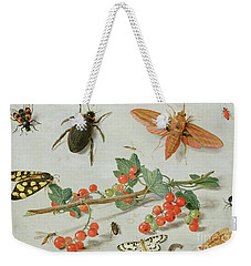 A Sprig Of Redcurrants With An Elephant Hawk Moth, A Magpie Moth And Other Insects, 1657 Weekender Tote Bag