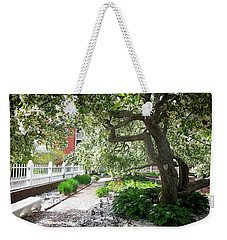 A Springtime Carpet Of White Petals From A Tree Weekender Tote Bag