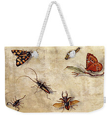 A Study Of Various Insects, Fruit And Animals Weekender Tote Bag by Jan Van Kessel the Elder