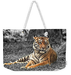 A Tiger Relaxing On A Cool Afternoon II Weekender Tote Bag