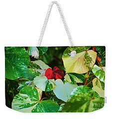 A Touch Of Red Weekender Tote Bag by Craig Wood