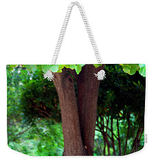 Weekender Tote Bag featuring the photograph A Tree Lovelier Than A Poem by Madeline Ellis