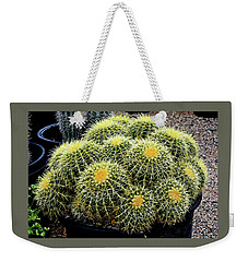 Weekender Tote Bag featuring the photograph A Tub Of Barrel Cacti by Jay Milo