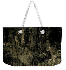 Weekender Tote Bag featuring the photograph A Walk In The Park by Jim Vance
