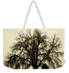 Weekender Tote Bag featuring the photograph A Winter's Day by Marilyn Hunt