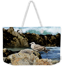 A Young Western Gull At Pacific Grove Weekender Tote Bag