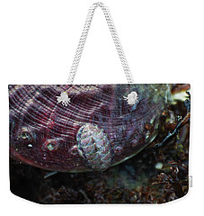 Weekender Tote Bag featuring the photograph Abalone And Chiton by Adria Trail