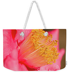 Absorbing Light Weekender Tote Bag
