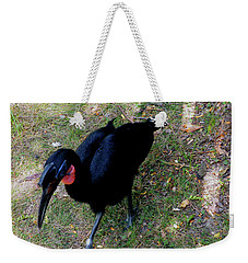Abssynnian Ground Hornbill Weekender Tote Bag