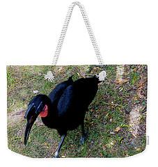 Abssynnian Ground Hornbill Weekender Tote Bag
