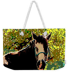 Abstract Image Of Horse Named Moon Weekender Tote Bag