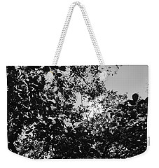 Weekender Tote Bag featuring the photograph Abstract Leaves Sun Sky by Chriss Pagani