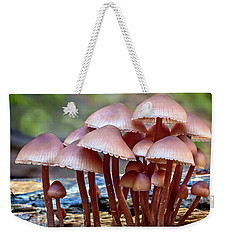 Weekender Tote Bag featuring the photograph Acceptance 4 by Mary Jo Allen