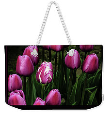 Weekender Tote Bag featuring the photograph Acceptance 5 by Mary Jo Allen