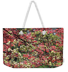Acer Leaves In Spring Weekender Tote Bag