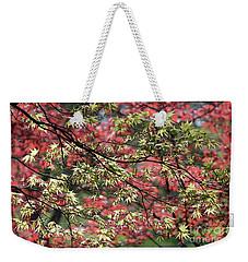 Acer Leaves In Spring Weekender Tote Bag