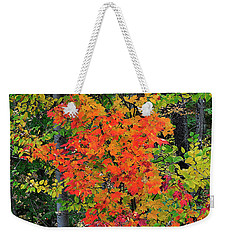 Weekender Tote Bag featuring the photograph Adirondack Crimson by Diane E Berry