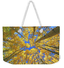 Weekender Tote Bag featuring the photograph Admiring Aspens - Colorado - Autumn by Jason Politte