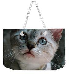 Adorable Kitty  Weekender Tote Bag by Kim Henderson