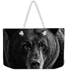 Weekender Tote Bag featuring the photograph Adult Male Black Bear by Coby Cooper