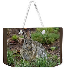 Adult Rabbit Grazing Weekender Tote Bag