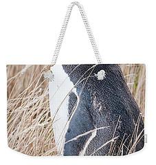 Adult Yellow-eyed Penguin 2 Weekender Tote Bag