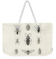 African Bugs And Insects Weekender Tote Bag