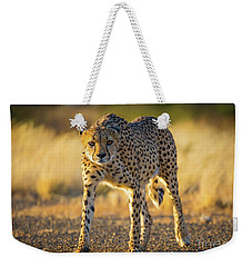 African Cheetah Weekender Tote Bag by Inge Johnsson