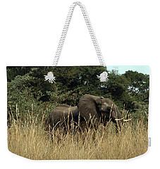 Weekender Tote Bag featuring the photograph African Elephant In Tall Grass by Karen Zuk Rosenblatt