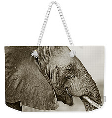 African Elephant Profile  Duotoned Weekender Tote Bag by Liz Leyden