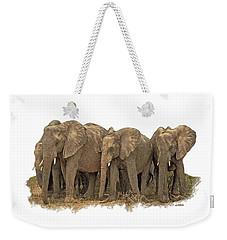 African Elephants 2 Weekender Tote Bag