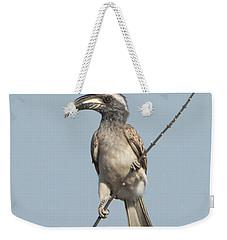African Grey Hornbill Tockus Nasutus Weekender Tote Bag
