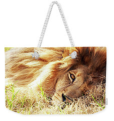 African Lion Closeup Lying In Grass Weekender Tote Bag