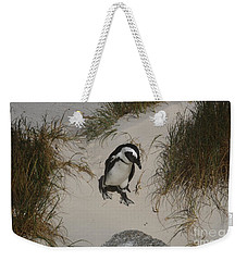 African Penguin On A Mission Weekender Tote Bag