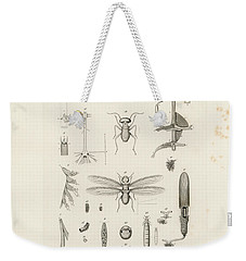 African Termites And Their Anatomy Weekender Tote Bag