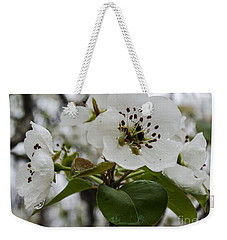 Weekender Tote Bag featuring the photograph After The Rain  2 by Donna Brown