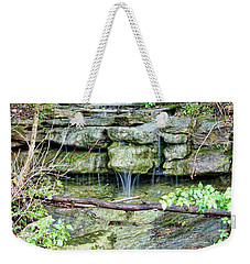 Weekender Tote Bag featuring the photograph After The Rain by Cricket Hackmann