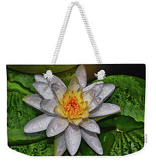 Weekender Tote Bag featuring the photograph After The Rain - Water Lily 003 by George Bostian