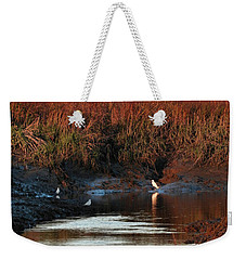 Weekender Tote Bag featuring the photograph Afternoon Break by Laura Ragland