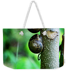 #aftertheyhavereignedtheywillrest Weekender Tote Bag by Becky Furgason
